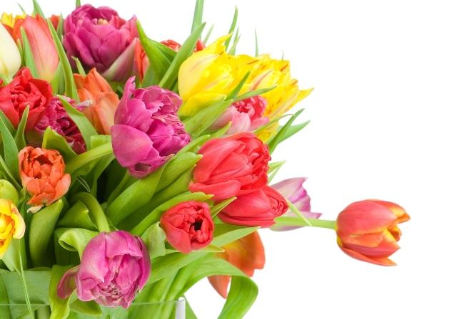 kwiaty-bukiet-tulipany.jpeg